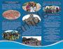 creative-brochure-design_ws_1432816728