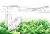 digital-illustration_ws_1499165673