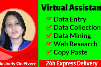 be your virtual assistant for data entry, typing, copy paste and web research
