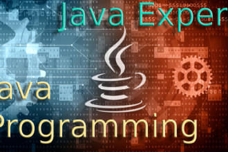 do java programming and java projects for you