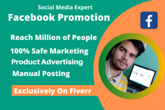 do facebook promotion of your business in usa