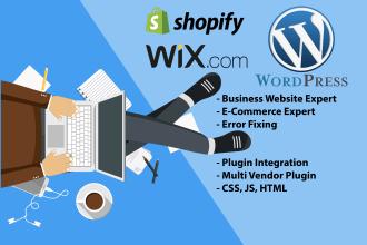 create business website design in wordpress or wix