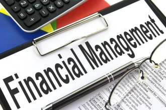 provide financial management, investment model and investment appraisal services