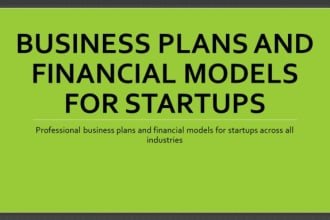 prepare business plans and business models for investor