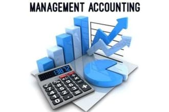 provide management accounting services