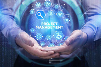 offer professional project management services