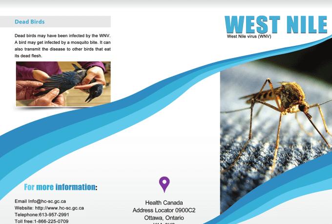 creative-brochure-design_ws_1461585541