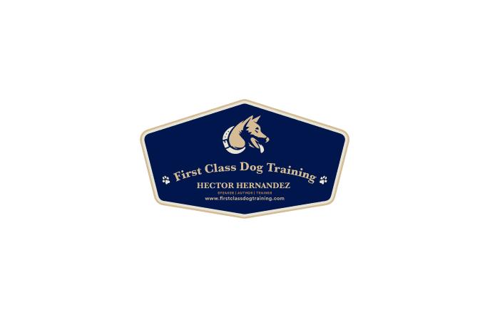 creative-logo-design_ws_1480400989