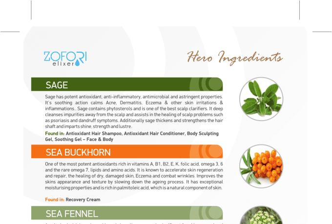 creative-brochure-design_ws_1482308231