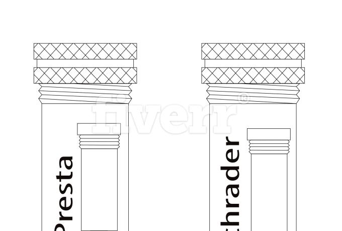 digital-illustration_ws_1446535722