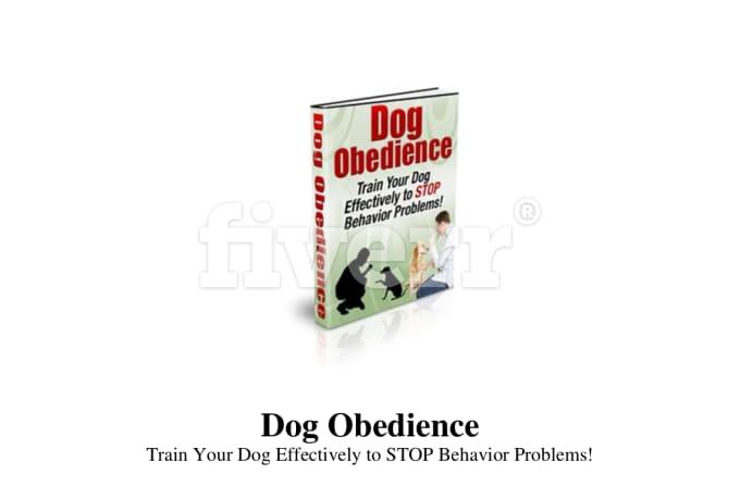 animal-care-pet-grooming_ws_1457568153