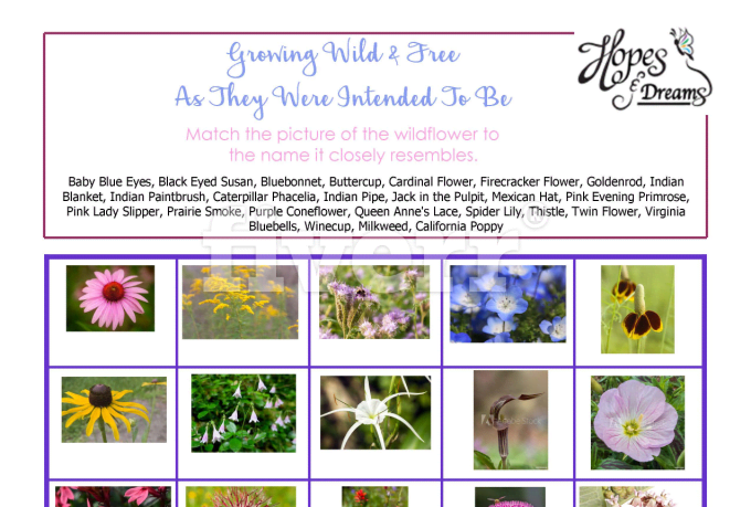 creative-brochure-design_ws_1463424276