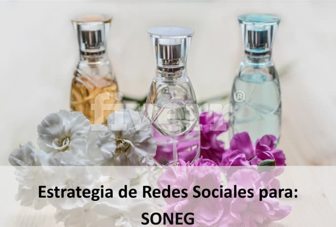 social-marketing_ws_1466808978