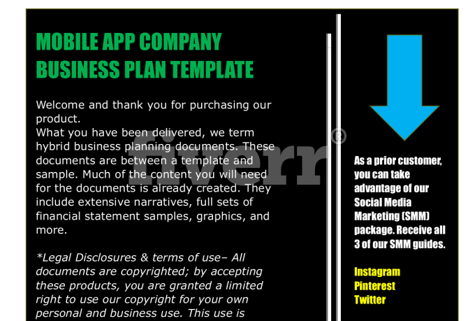Mobile App Business Plan Template Fiverr - Full business plan template