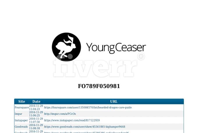 seo-services_ws_1480439370