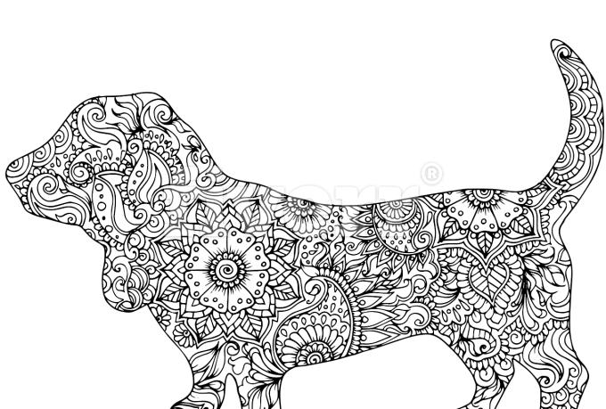 digital-illustration_ws_1485480590