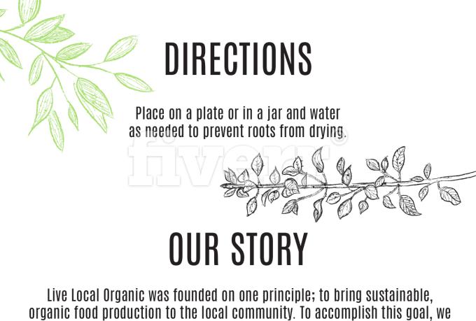 creative-brochure-design_ws_1485544226