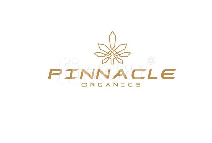 creative-logo-design_ws_1485558565