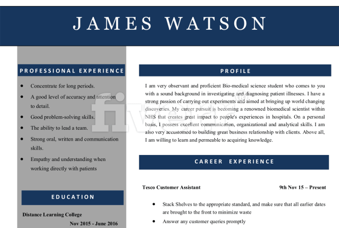resumes-cover-letter-services_ws_1487555085
