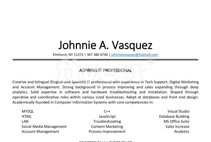professionally create or rewrite your resume by epiccv