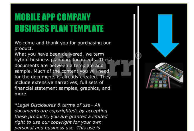 Mobile App Business Plan Template Fiverr