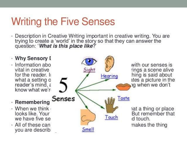 essay experience very memorable using all 5 senses describ Essay forms narrative essay using the five senses essay me visiting my eyes and how experience the five inspire our use your all five memorable: using.
