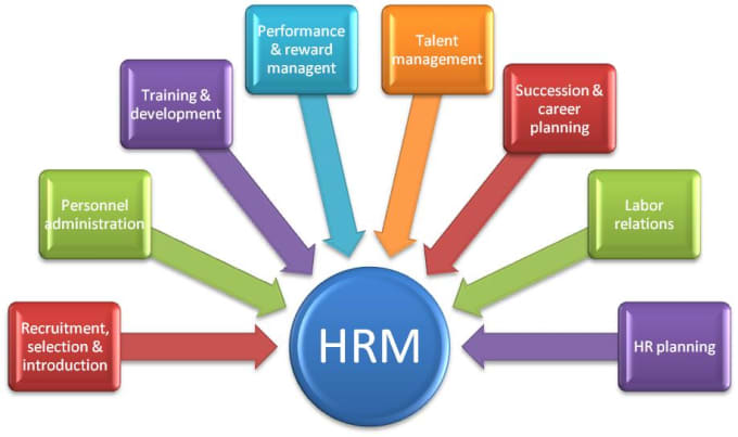 hrm training and development
