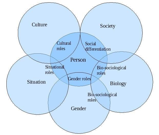 culture gender roles essay