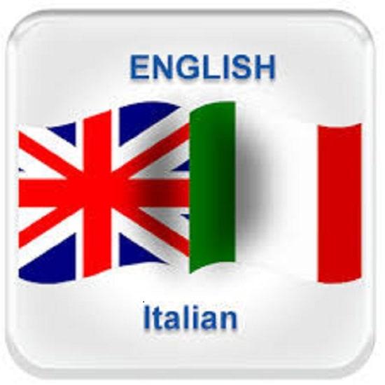french english translate essay
