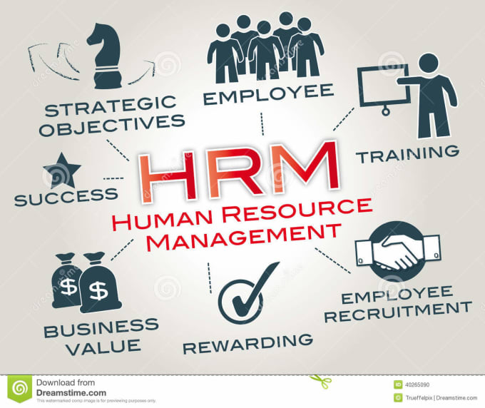 p5 human resouces in management