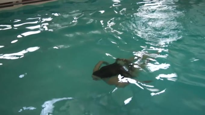 Pool smal