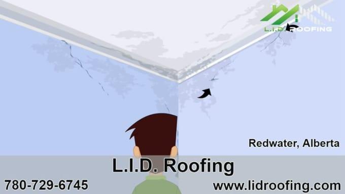 LID Roofing - Meet Dave, Roof Repair