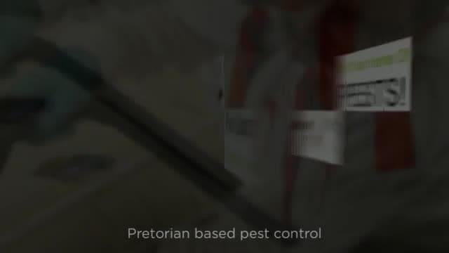 wwwpestcontrolpretoriacom