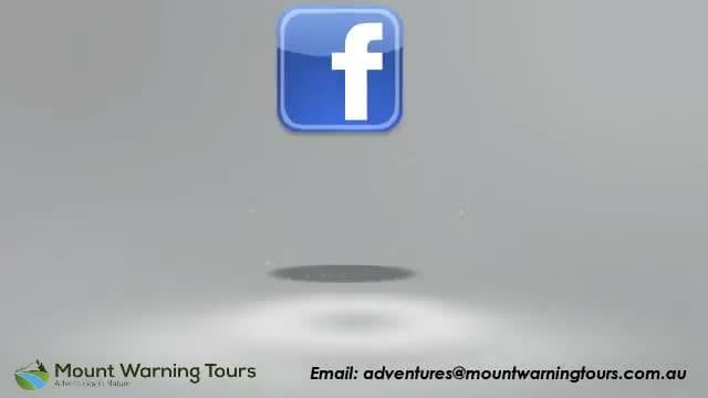 social_media_accounts__mtwarning