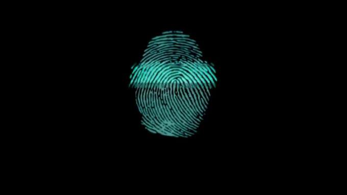 Fingerprint_diworrall