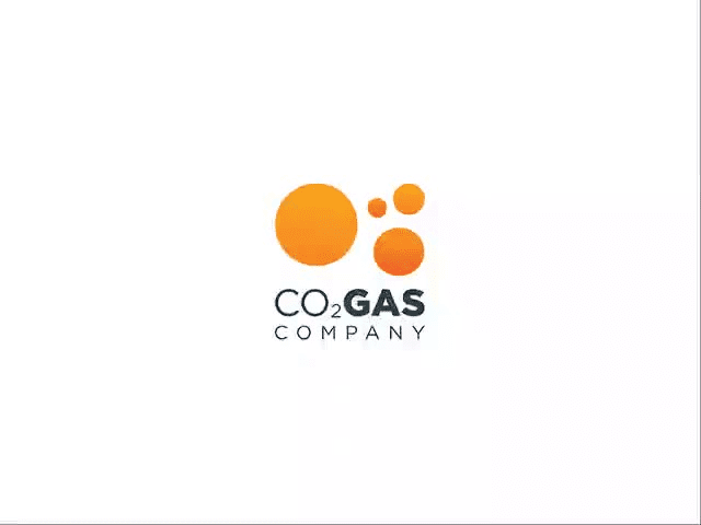 The_co2_gas