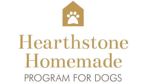 Hearthstone_HomemadeM
