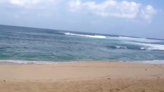 sing happy birthday from hawaii