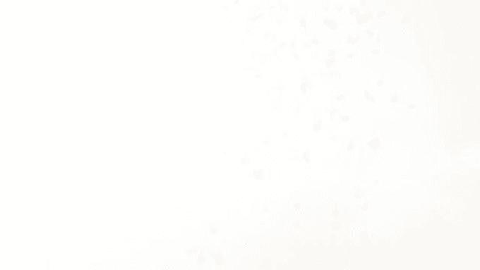 reneelweber