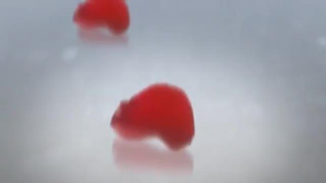 Video_cuicui