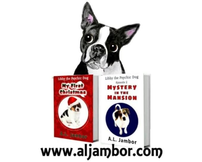 Libby book promo MP4