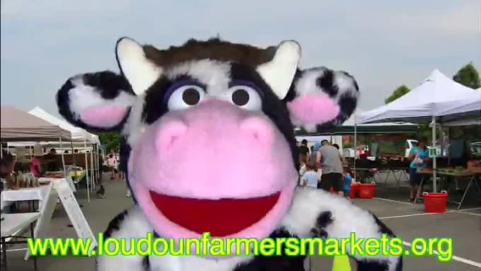 CascadesMarketMoorice
