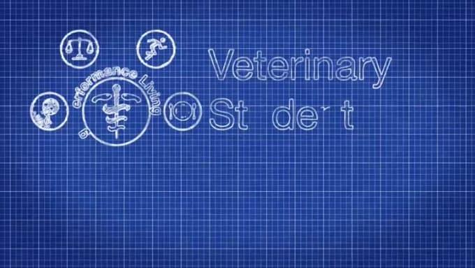 VetStudent_2