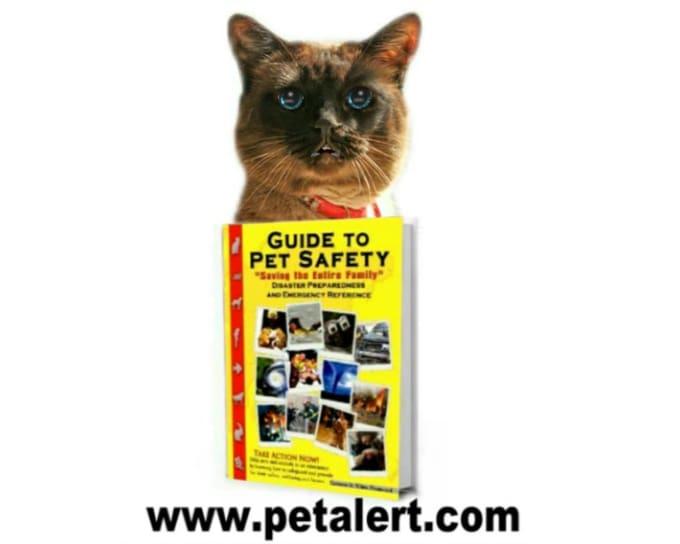 pet alert 2 MP4