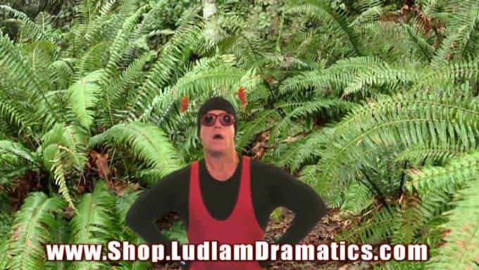 LadyBug LudlamDramatics