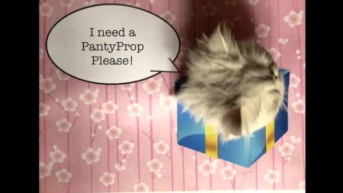 pantyprop