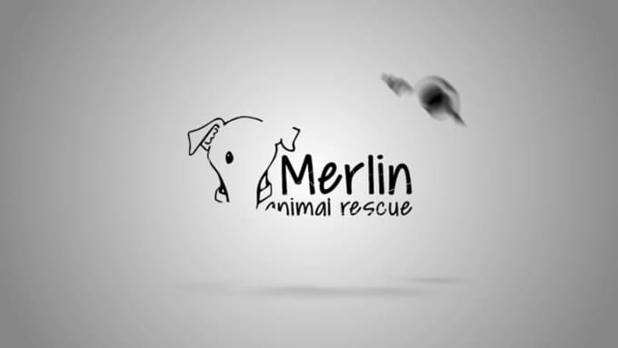 merlin animal rescue