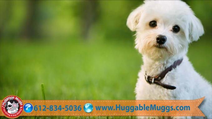 Nuggable Muggs