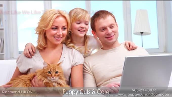 Pet Grooming Video