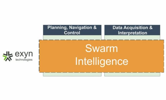 Slide_Swarm Intelligence_1